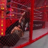 WWE_Hell_In_A_Cell_2018_PPV_720p_WEB_h264-HEEL_mp40408.jpg