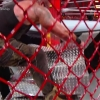WWE_Hell_In_A_Cell_2018_PPV_720p_WEB_h264-HEEL_mp40443.jpg