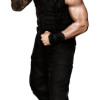 romanreigns_1_full_20140630.png